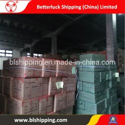 From China to Russia Sukhuml Railway Cargo Transportation Sea Freight