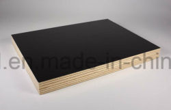 Construction 4mm White Oak Plywood Best Price Beech Plywood Export Quality Bamboo Veneer Plywood