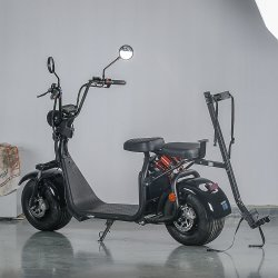 2017 Ecorider Citycoco Electric Motorcycle Scooter with EEC Coc Approved