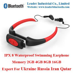156ac9ce83b 4 to 7 Days Ship to Ukraine Iran Qatar Russia! Only Serious Buyer Contact!