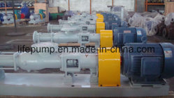 G40-1 Mono Screw Pump for Slurry