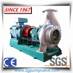 Titanium/Duplex Stainless Steel 2205/Stainless Steel SS304/Single Stage Lime Grinding Foam Hzj Series Slurry Pump for Flotation Process Open Impeller