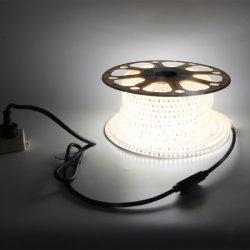 AC110V AC220V SMD2835 Outdoor AC230V Decoration Waterproof Ce IP65 LED Strip Lights