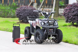 2017 Popular Factory Direct Selling 36V 500W Eelectric ATV