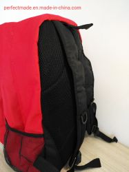 Sport Travel Backpack, School Bag, Lovely Kids School Laptop Backpack, Waterproof Fashion Double Shoulder Backpack, Manufacture Leisure Travel Outdoor Backpack