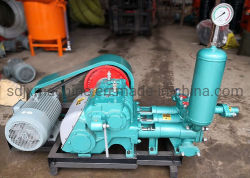 Good Price Bw-250 High Pressure Triplex Mud Pump, Slurry Pump for Borehole Rig