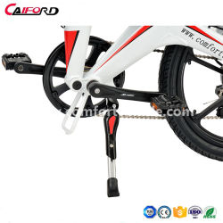 2018 Folding Electric Bicycle with Alum Wheel Motor Used Electric Bicycle