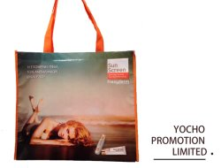 Promotional PP Laminated Non Woven Shopping Bag with Cheapest Competitive Price