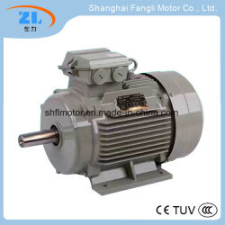 Ie3 Ye2 Three Phase Asynchronous Electric AC Motor