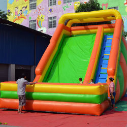 Inflatable Bounce Slides for Amusement Park (SL-064)