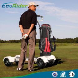 60v 20 8ah 1000w New Design Electric Cart Golf Board
