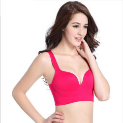 New Style Underwear Wire Free Sports Wholesale Shockproof Sports Bra