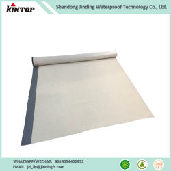 China Hdpe Waterproofing Membrane, Hdpe Waterproofing