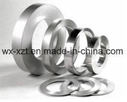 strip Flat spring stainless steel