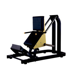 Plated Loaded China Low Row Body Building Sports Machine Commercial Gym Equipment