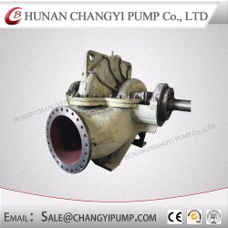 Horizontal Split Case Centrifugal Water Slurry Pump