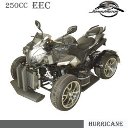 Factory Cheaper 250cc EEC Approved ATV (JY-250A)