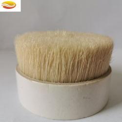 Alta qualidade 100% Chungking Branqueados Cerdas fervida pêlos de suínos