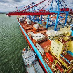 خدمة سريعة من Forwarder البحرية مع FCL رخيصة بحر إل سي الشحن من تشنغ تشو لويانغ جياوزوو شانجكيو شين يانغ إلى مانزانيو المكسيك
