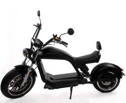 Nouvel An Luqi Nouvelle Promotion Stand up off road Citycoco Scooter électrique avec deux grande roue