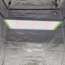 Ilummini LED da 320 W e 300 Watt con tecnologia Grow Lightng Full Spectrum IR UV dimmerabile