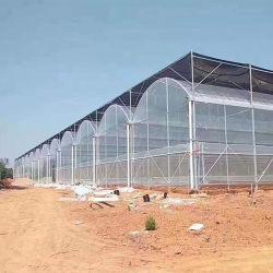農業の情報処理機能をもったマルチスパンのフィルムの温室の野菜および花の耕作
