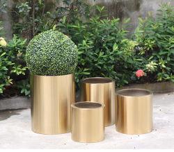 Flowerpots d'acciaio a terra esterni del giardino dell'interno