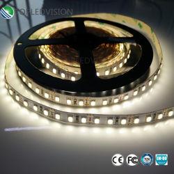LED de baixa tensão Stripe 2835 60LEDs/M 12W com TUV FCC