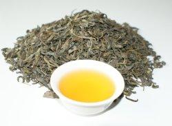 O Chá Verde Op Pekoe Bop Big Leaf