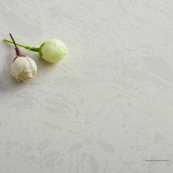 Созданный Quartz поверхность на кухонном столе