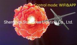 5 Jahre der Garantie-5K 3D Telefon APP-des Steuerled ganz eigenhändig geschriebe der Bildschirmanzeige-360 Hologramm-Ventilator, diespieler-Hochzeits-Dekoration-Licht-Weihnachtsdekoration-Beleuchtung bekanntmachen
