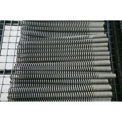 De Lente van het roestvrij staal voor Lopende banden