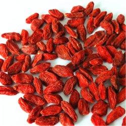 Gou Qi Top Grade faible prix des fruits séchés Goji