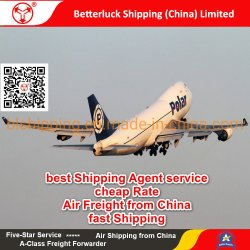 Servizi di logistica dell'aereo da trasporto al Port-au-Prince dell'Haiti da agente polare delle merci aviotrasportate della Cina/Guangzhou/Shenzhen/Hong Kong