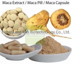 Racine de Maca biologique des aliments de santé Extrait de Ginseng Capsule mâle