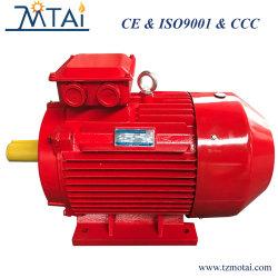 Motore elettrico di risparmio di temi Premium IE3 con CE