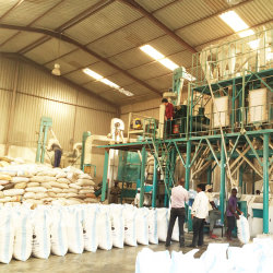 Fresa per mais con macchine per la lavorazione del mais