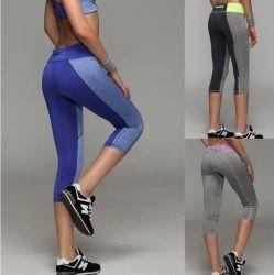 Femme femmes filles Sports Populaires Legging court serré Mesdames Yoga