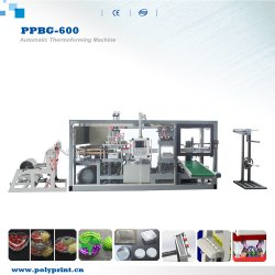 De plástico transparente bolo Pet Egg Tart Embalagem Caixa Blister máquina de formação