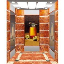 Elevatore residenziale del passeggero utilizzato costruzione concentrare di apertura di capienza 450kg alta