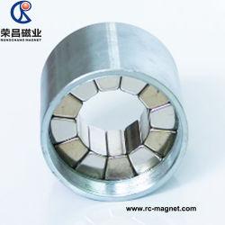 NdFeB personnalisé N35 N42 N48 Rare Earth Assemblée magnétique