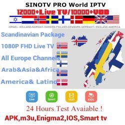 Ex Yu IPTV Abonnement européen de la Suède IPTV 12 Mois M3U Essai libre de la Grèce Suédois Tchèque Europa IPTV grec