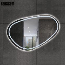 La stanza da bagno chiara posteriore astuta di figura irregolare LED rispecchia la parete della decorazione