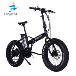 Lithium Battery를 가진 20 인치 Electric Foldable Electric Bicycle