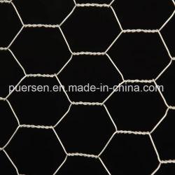"""1 """" X1 """" het Opleveren van het Gevogelte van pvc/het Netwerk van de Kip/het Hexagonale Netwerk van de Draad"""
