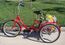 Fabricación y venta al por mayor de bicicletas tres ruedas Trike carga triciclo comercial (FP-TRBK1801)