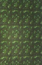 Neoprene con Tessuto tipo Camo per Muta (HX015)