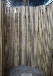 Fabrik-Großverkauf-Bambus, der für Gärten ficht
