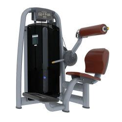 Extension de dos /TZ-6006 des équipements de gym