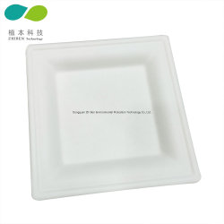 10дюймов Белый Квадрат Biodegrable бумаги торт пластину